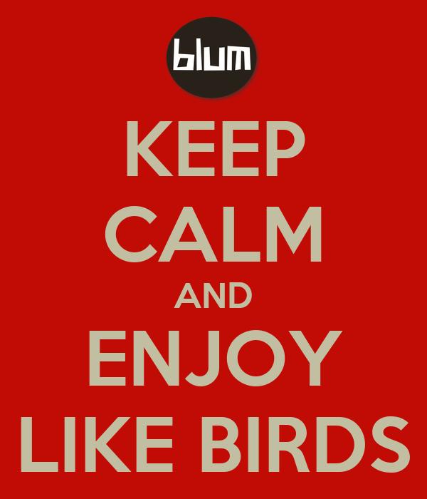 KEEP CALM AND ENJOY LIKE BIRDS