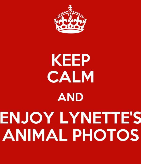 KEEP CALM AND ENJOY LYNETTE'S ANIMAL PHOTOS