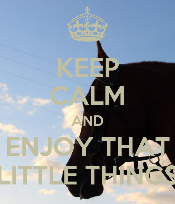 KEEP CALM AND ENJOY THAT LITTLE THINGS