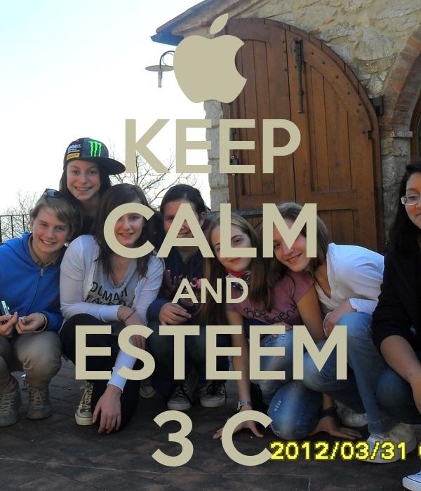 KEEP CALM AND ESTEEM 3 C