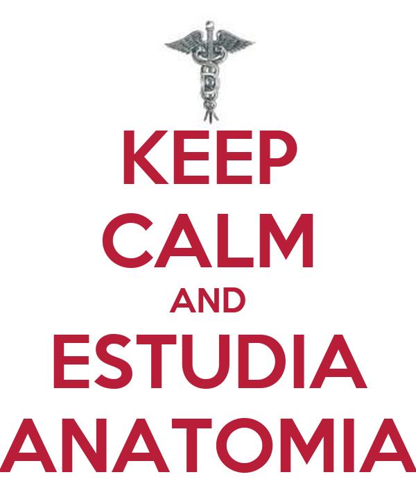 KEEP CALM AND ESTUDIA ANATOMIA
