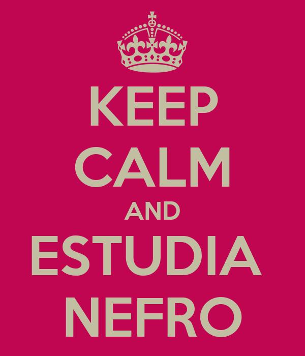 KEEP CALM AND ESTUDIA  NEFRO