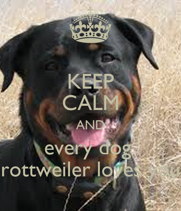 KEEP CALM AND every dog  rottweiler loves you