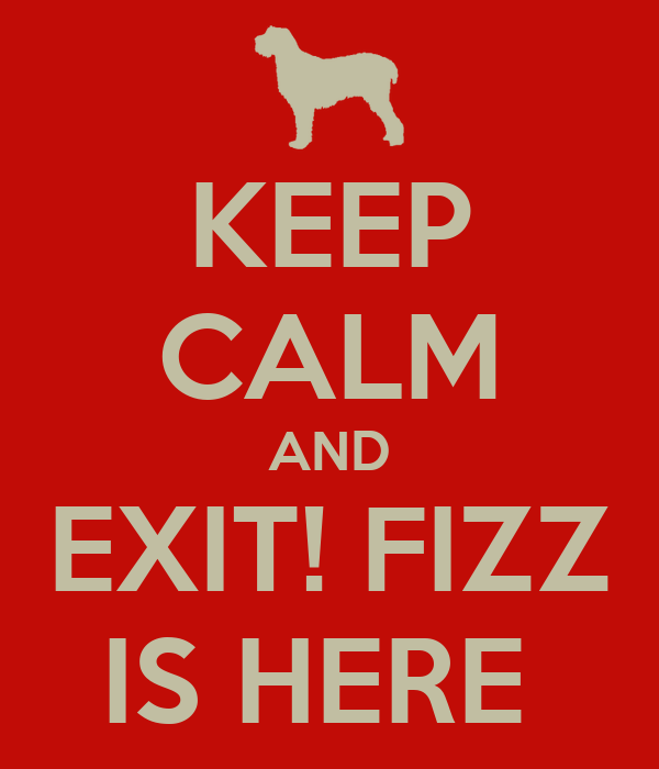 KEEP CALM AND EXIT! FIZZ IS HERE