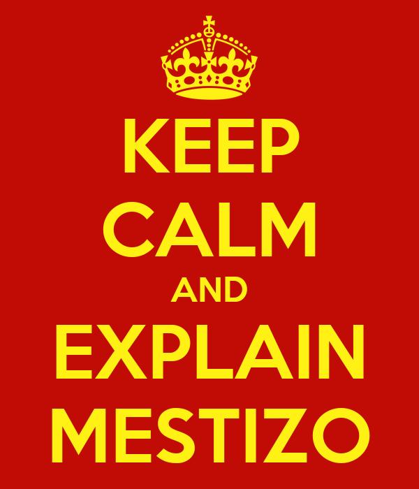 KEEP CALM AND EXPLAIN MESTIZO