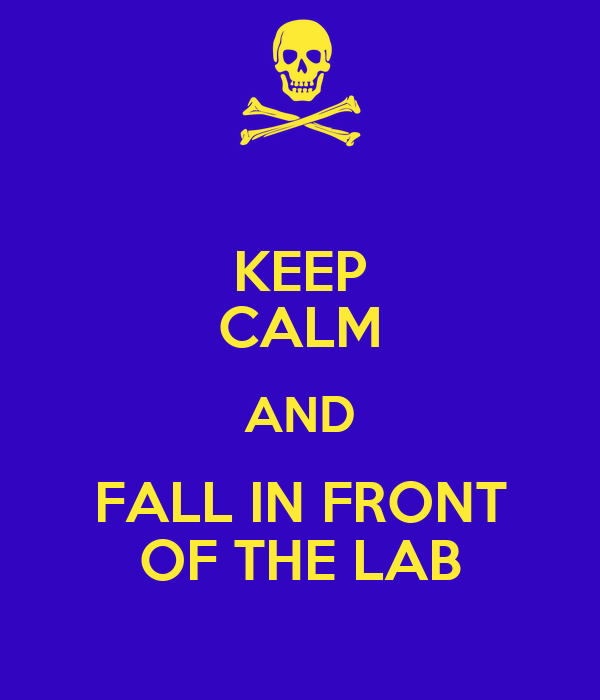 KEEP CALM AND FALL IN FRONT OF THE LAB
