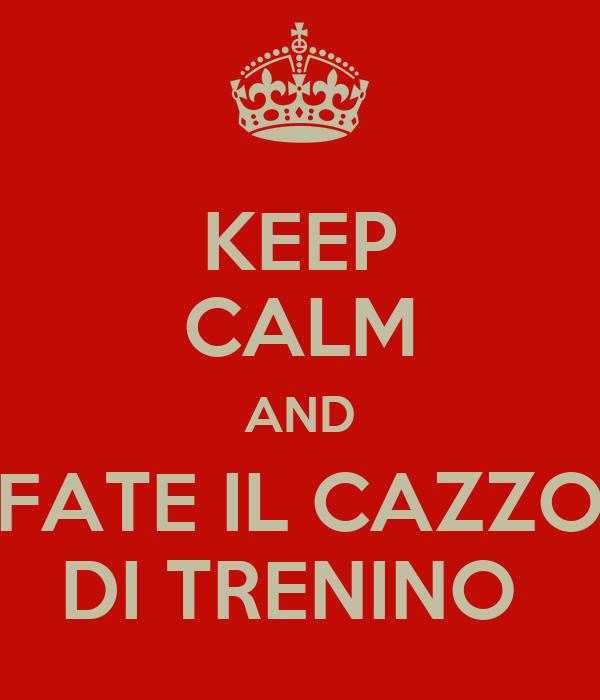 KEEP CALM AND FATE IL CAZZO DI TRENINO
