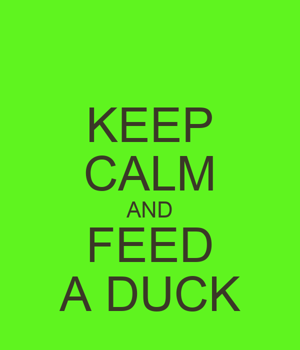 KEEP CALM AND FEED A DUCK