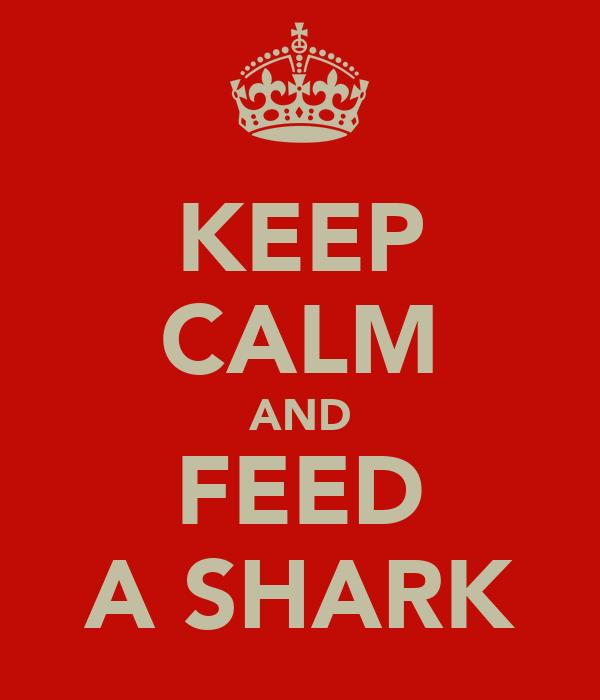 KEEP CALM AND FEED A SHARK