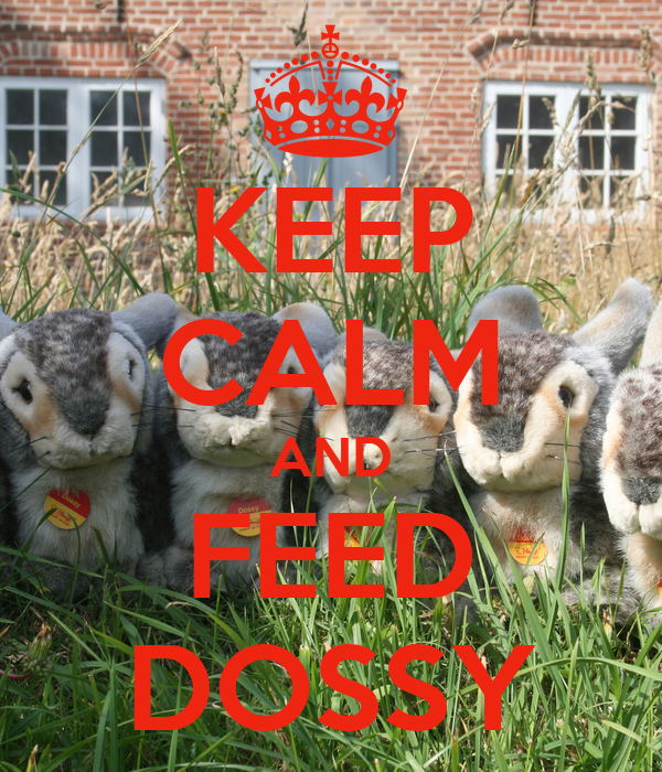 KEEP CALM AND FEED DOSSY