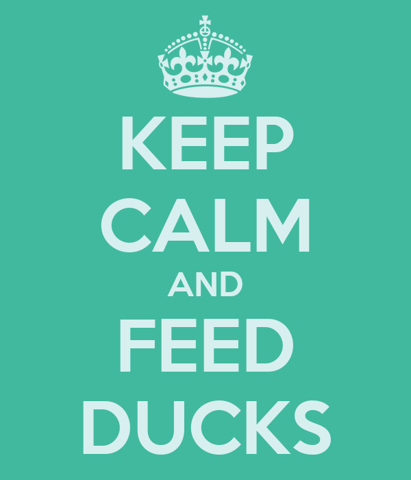 KEEP CALM AND FEED DUCKS