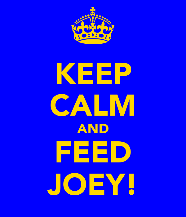 KEEP CALM AND FEED JOEY!