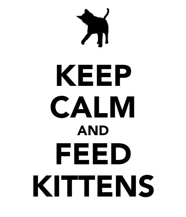 KEEP CALM AND FEED KITTENS