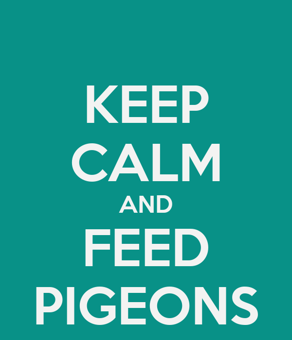 KEEP CALM AND FEED PIGEONS
