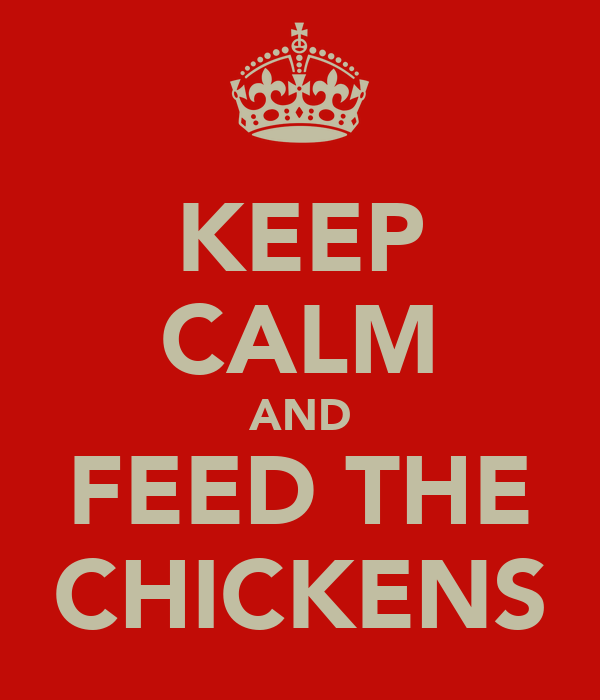 KEEP CALM AND FEED THE CHICKENS