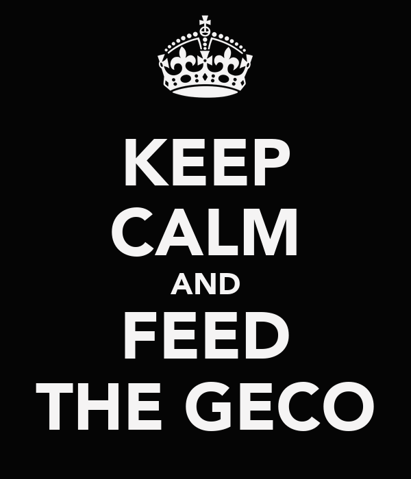 KEEP CALM AND FEED THE GECO