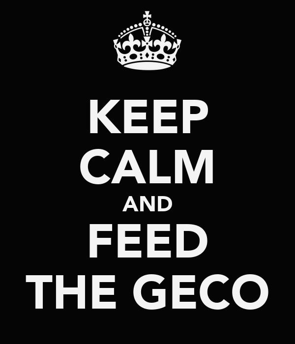 KEEP CALM AND FEED THE GECO