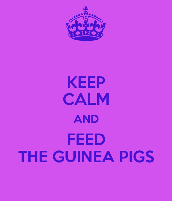 KEEP CALM AND FEED THE GUINEA PIGS