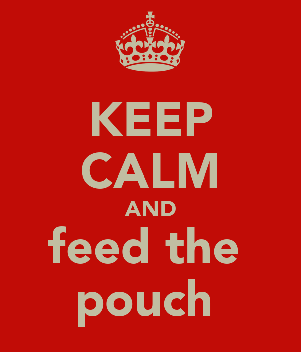 KEEP CALM AND feed the  pouch