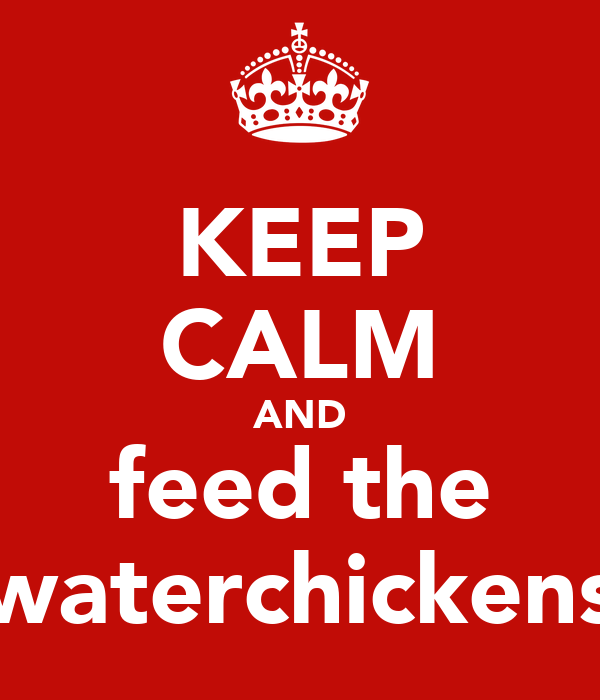 KEEP CALM AND feed the waterchickens