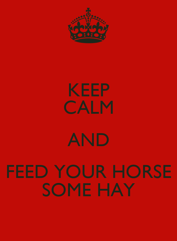 KEEP CALM AND FEED YOUR HORSE SOME HAY