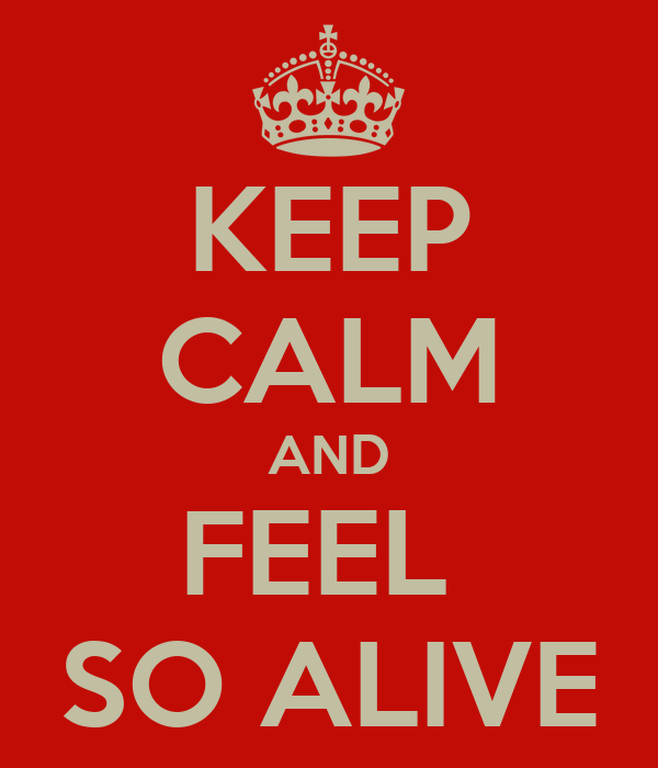 KEEP CALM AND FEEL  SO ALIVE
