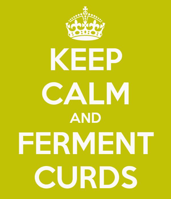 KEEP CALM AND FERMENT CURDS