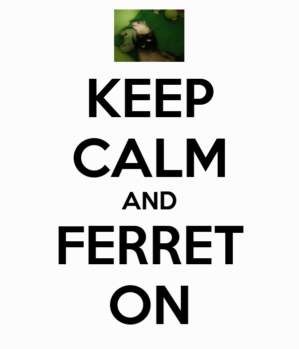 KEEP CALM AND FERRET ON