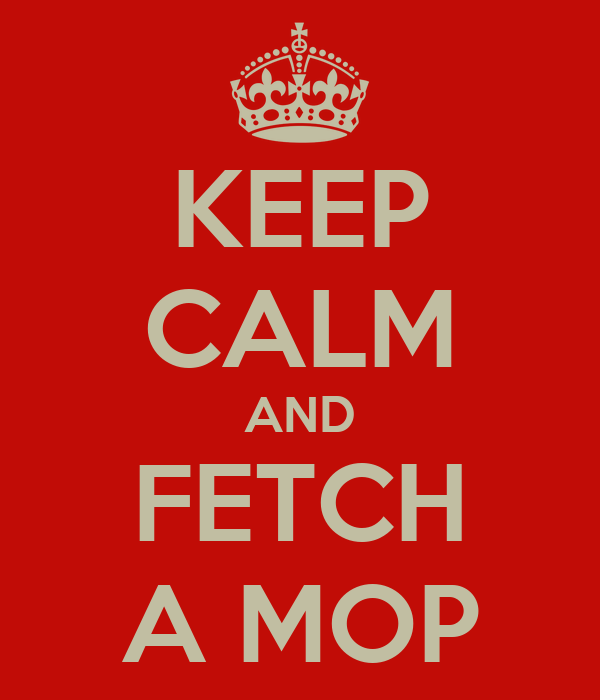 KEEP CALM AND FETCH A MOP