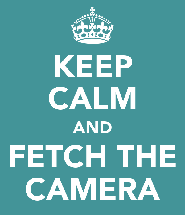 KEEP CALM AND FETCH THE CAMERA
