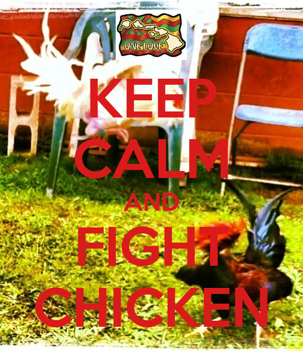 KEEP CALM AND FIGHT CHICKEN