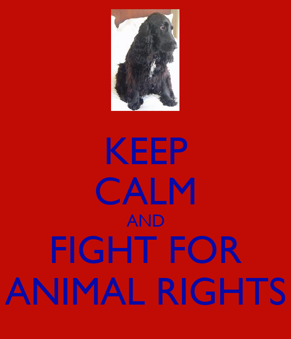 KEEP CALM AND FIGHT FOR ANIMAL RIGHTS