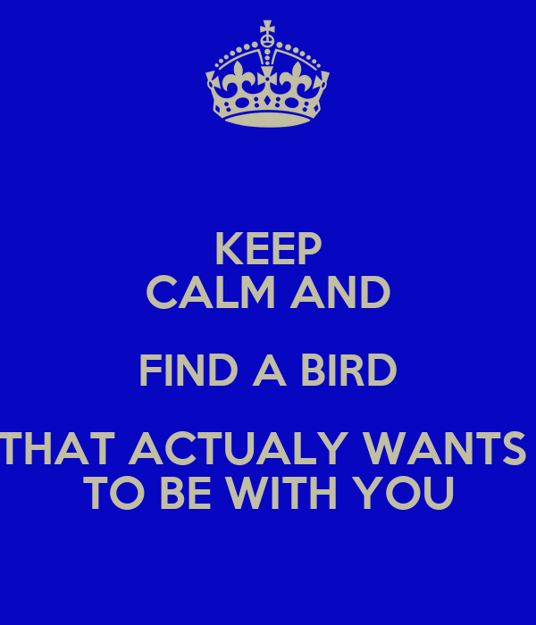 KEEP CALM AND FIND A BIRD THAT ACTUALY WANTS  TO BE WITH YOU