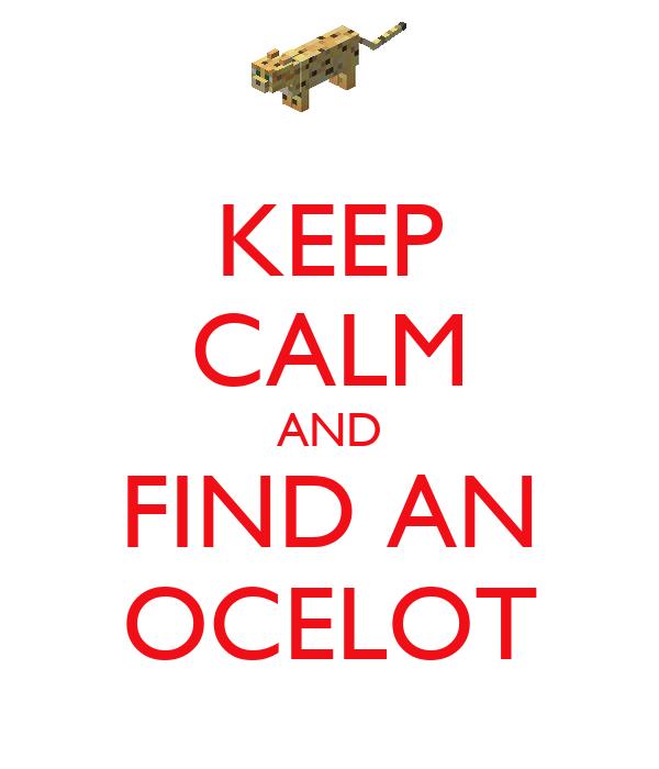 KEEP CALM AND FIND AN OCELOT