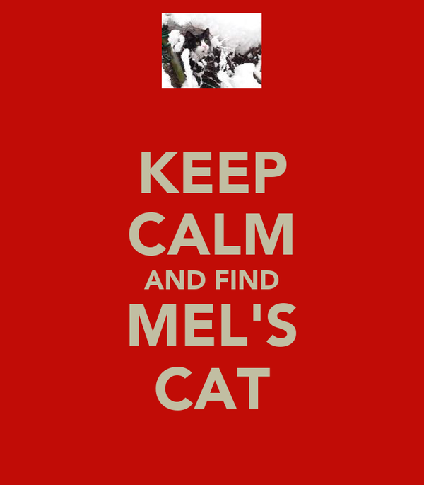 KEEP CALM AND FIND MEL'S CAT
