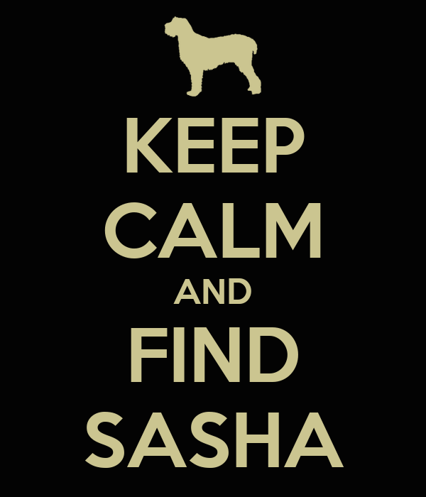 KEEP CALM AND FIND SASHA