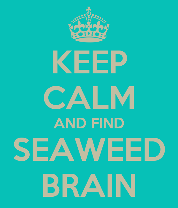 KEEP CALM AND FIND SEAWEED BRAIN