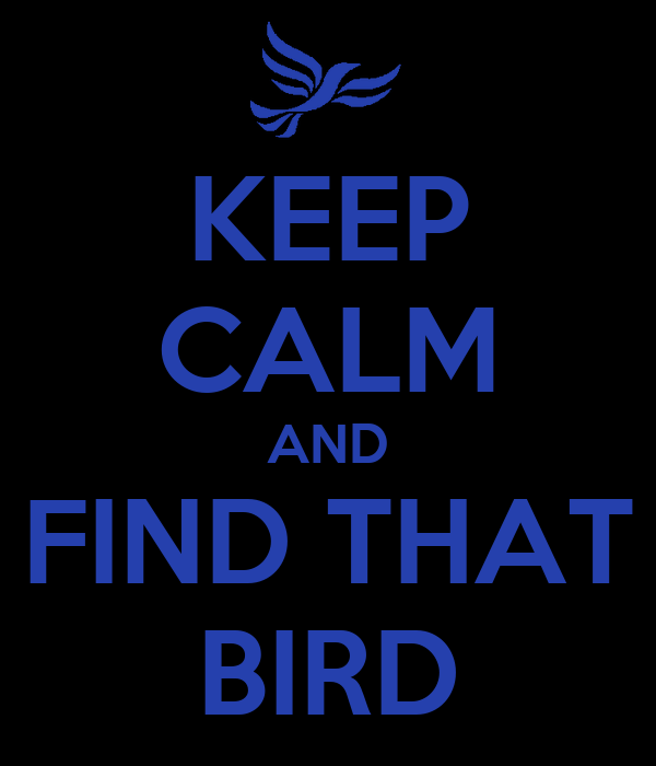 KEEP CALM AND FIND THAT BIRD