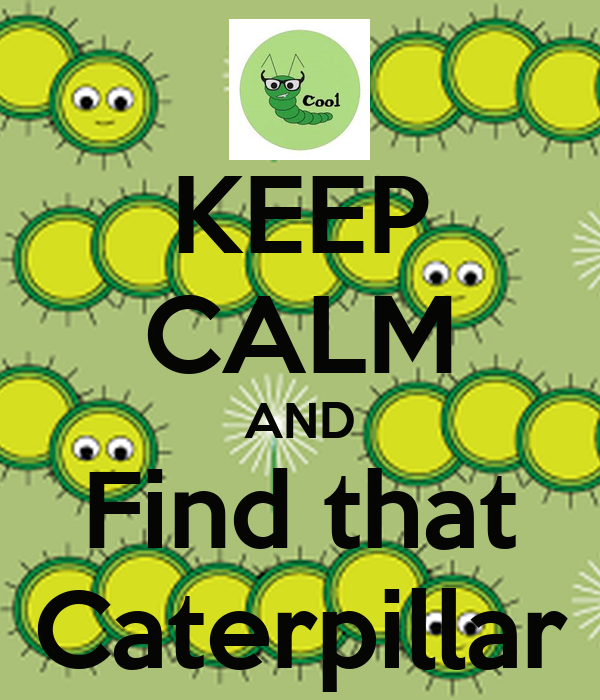 KEEP CALM AND Find that Caterpillar