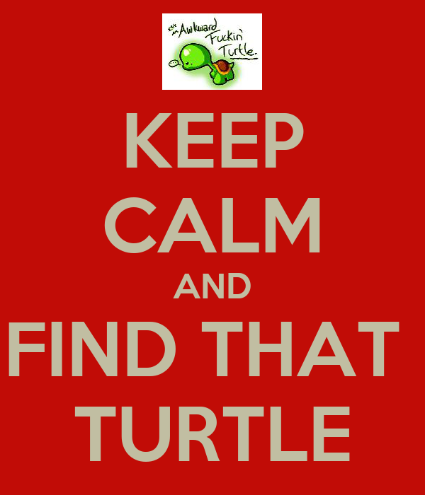 KEEP CALM AND FIND THAT  TURTLE