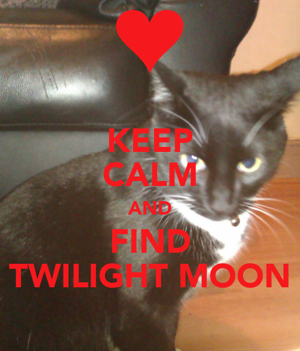 KEEP CALM AND FIND TWILIGHT MOON