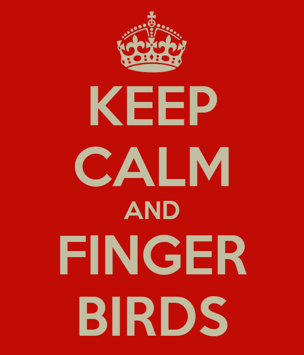 KEEP CALM AND FINGER BIRDS