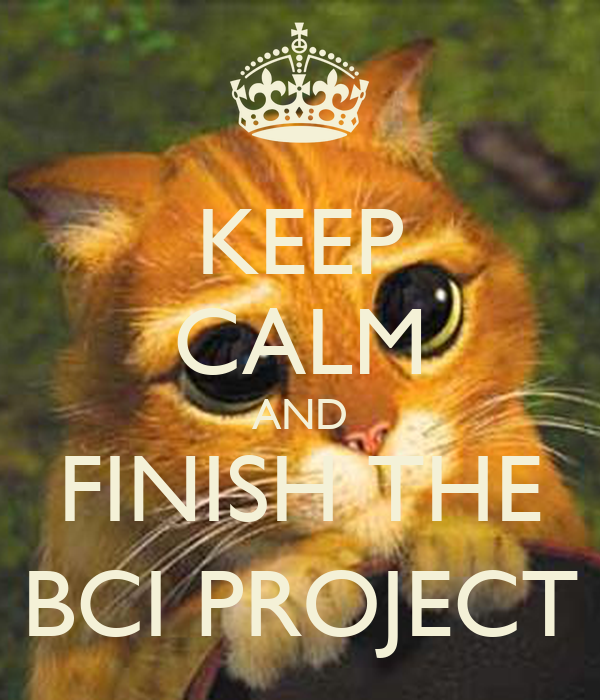 KEEP CALM AND FINISH THE BCI PROJECT
