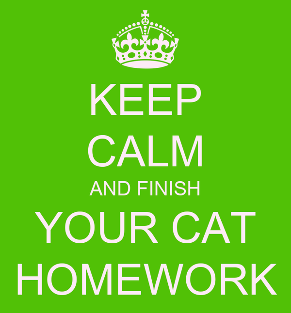 KEEP CALM AND FINISH YOUR CAT HOMEWORK