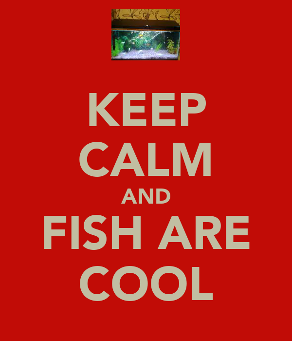 KEEP CALM AND FISH ARE COOL