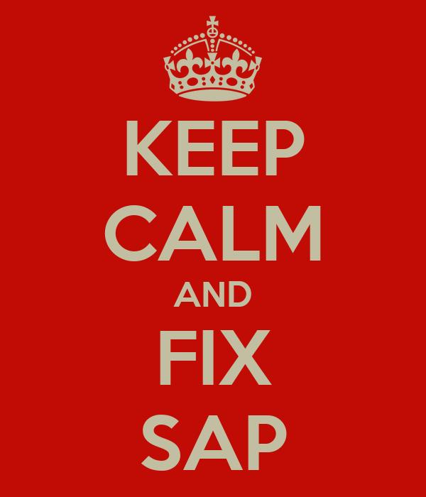 KEEP CALM AND FIX SAP