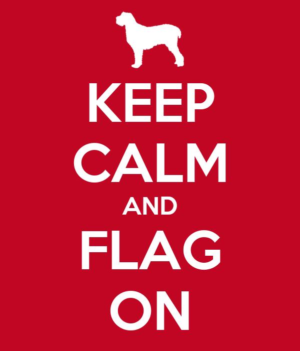 KEEP CALM AND FLAG ON