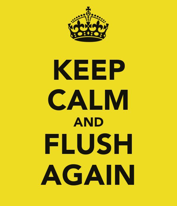 KEEP CALM AND FLUSH AGAIN