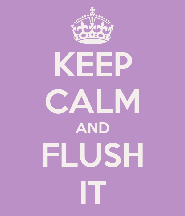 KEEP CALM AND FLUSH IT