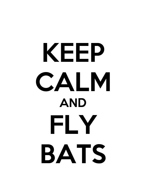 KEEP CALM AND FLY BATS